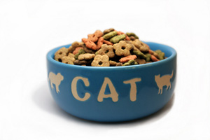 Collection of homemade cat food and treats recipes