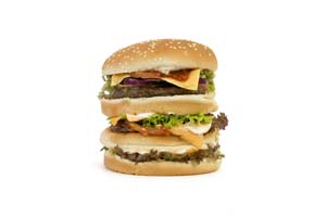 Collection of burger recipes