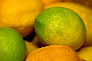 Collection of citrus fruit recipes