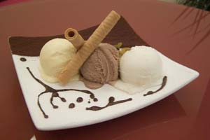 Collection of ice cream recipes
