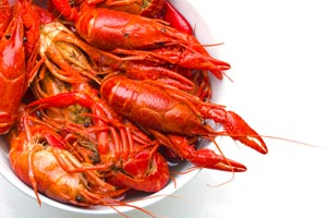 Collection of crawfish recipes