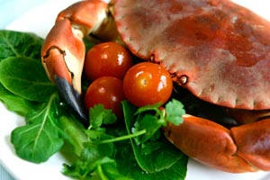 Collection of crab recipes