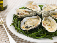 oysters recipes