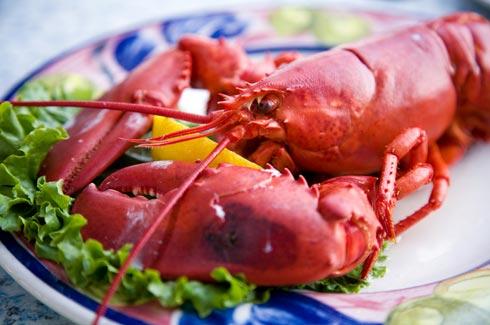 Lobster Recipes - CDKitchen
