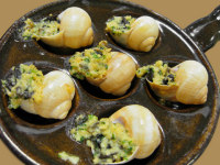 escargot recipes
